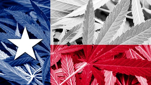 Texas Legislature Considers Marijuana Legalization