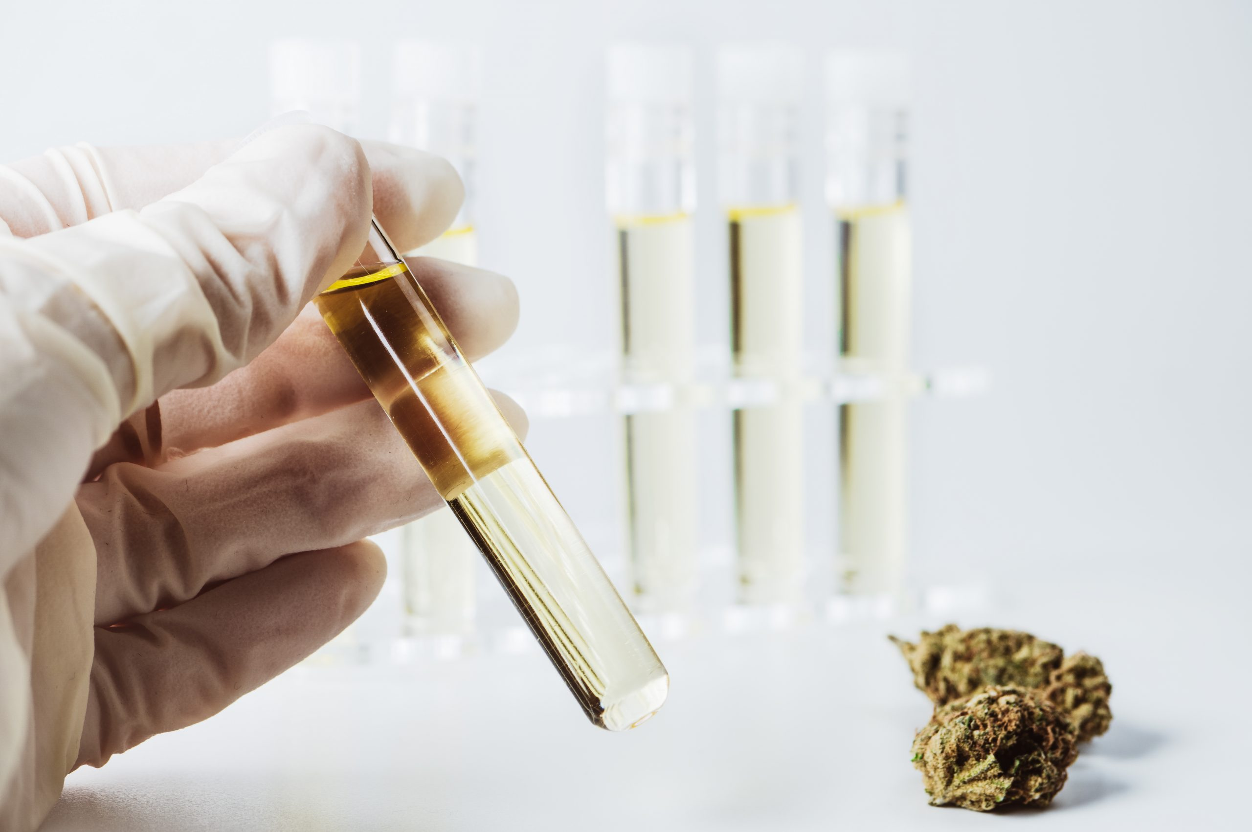 THC Concentration Testing Comes to Texas